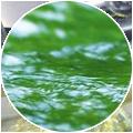 鑫诺斯绿色环保